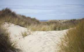 nature, dunes, sand, grass, sea, sky