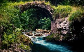 natura, ponte, foresta, ruscello, fiume, torrente