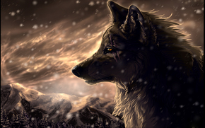 wolf, scars, snow, Mountains, forest, blizzard