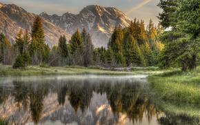 лес, горы, река, отражение