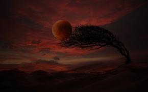 coucher du soleil, arbre, nuages, Montagnes