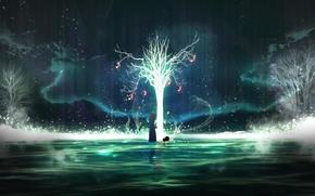 男, 水, ツリー, スカーフ, 夜, 光, 夜空, シルエット, 反射, オーロラ