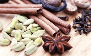 spices, cinnamon, vanilla, star anise, carnation, cardamom