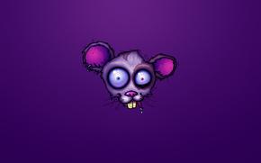 mouse, rabbia, testa, porpora