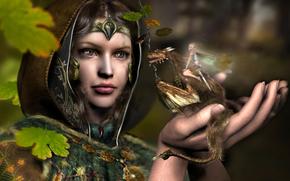 Fantasy, girl, dragon, elf