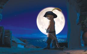 Puss in Boots, Antonio Banderas, night, city, moon