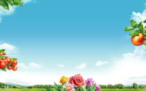 сад, коллаж, яблоко, томат, розы, цветы, небо, облака