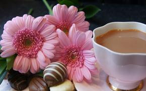 чай, молоко, конфеты, цветы