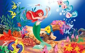 The Little Mermaid, disney, cartone animato