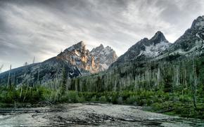 fiume, foresta, Montagne