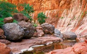 desfiladeiro, desfiladeiro, rio, rvores, pedras, musgo, Palms, angra, reflexo