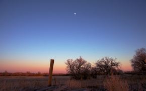wieczr, pole, drzew, pomaraczowy, rowy, zachd soca, Niebieski, niebo, ksiyc