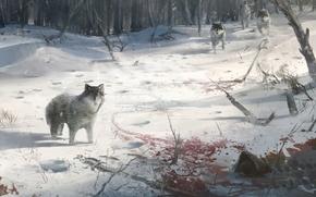 Winter, Wolves, blood, drift, snow