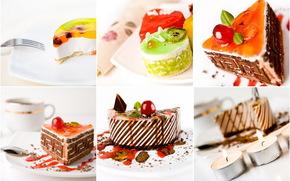 cake, delicious, Cherry, kiwi, sponge cake