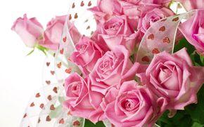 розы, розовые, бутоны, лепестки, тесьма, сердечки