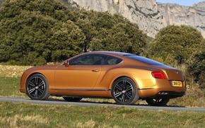 Bentley, Continentale, rm, Supercar, vista posteriore, strada, alberi, Montagne, Bentley
