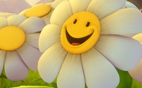 camomile, smile, flower