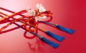 Japan, braid, cord, rope, flower