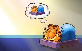 ガーフィールド, アニメーション, 猫, 眠る, 夢