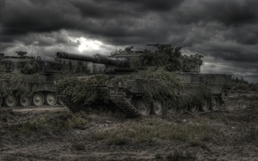 tank, Disguise, bad weather