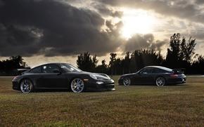 Porsche, negro, cielo, las nubes, Los rboles, Porsche