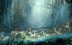 арт, лебеди, птицы, пруд, вода, купание, брызги, лес