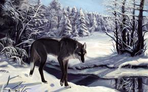 lupo, neve, inverno, alberi, fiume, tracce