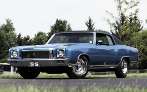 Chevrolet, Monte Carlo, front, muscle car, blue, grass, Trees, Chevrolet