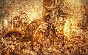 自行车, 背景, 质地