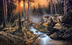 Art, nature, forest, Wolves, flock, creek