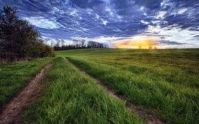 field, road, sky, landscape