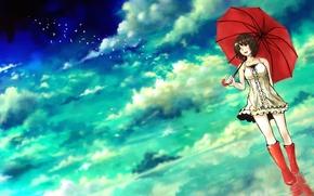 арт, девочка, зонт, сапоги, зонтик, вода, птицы, облака