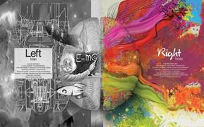 cervello, Emisfero, Einstein, logica, creazione, vernici, matematica, scienza, arte, creativo