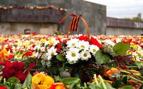День Победы, георгиевская ленточка, цветы, память