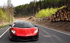 Lamborghini, Aventador的, 红色, 汽车, 机械, 汽车