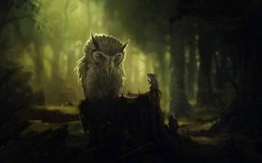 gufo, mouse, foresta, alberi, moncone, conversazione, buio
