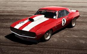 car, track, race, power, sunset, Chevrolet