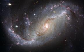галактика, созвездие, Золотая Рыба