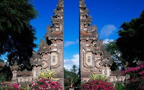 Bali, Indonesia, colore