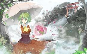 девушка, зонт, зонтик, рисунок, цветы, букет, врата, ступеньки, лестница, ветер, пузырьки, лепестки