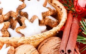cookies, glaze, basket, Nuts, cinnamon, Tree, needles, ball. New Year