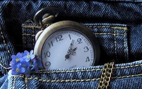 часы, джинсы, карман, цепочка, цветы
