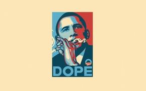 Minimalismo, Barack Obama, Arte