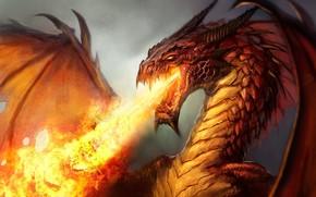 drago, fuoco, mostro