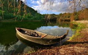 性质, 湖, 船, 树, 滨