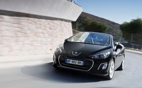 машины, колёса, Peugeot