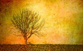 albero, paesaggio, stile, sfondo