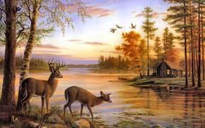 painting, deer, nature, river, birch