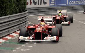Alonso, poids