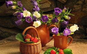 Flowers, bouquet, flower, Bells, nature, summer, still life, strawberry, berry, basket, basket, pitcher